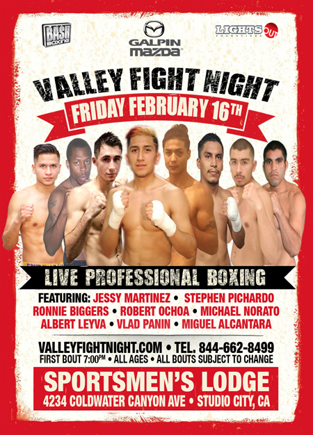 Valley Fight Night